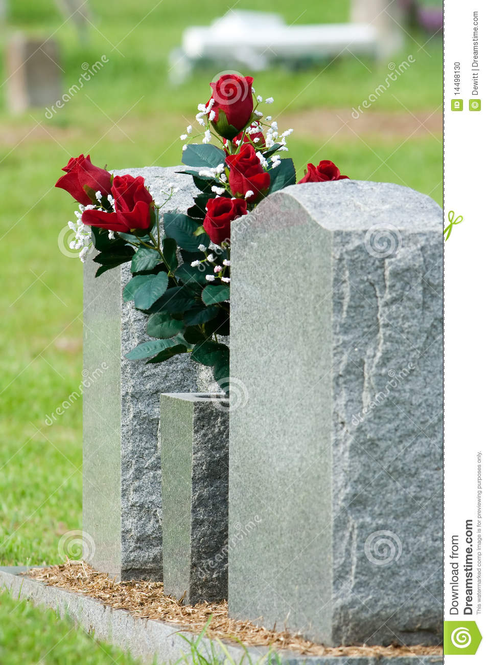 Red Grave Flowers Stock Photo Image Of Cemetery Head