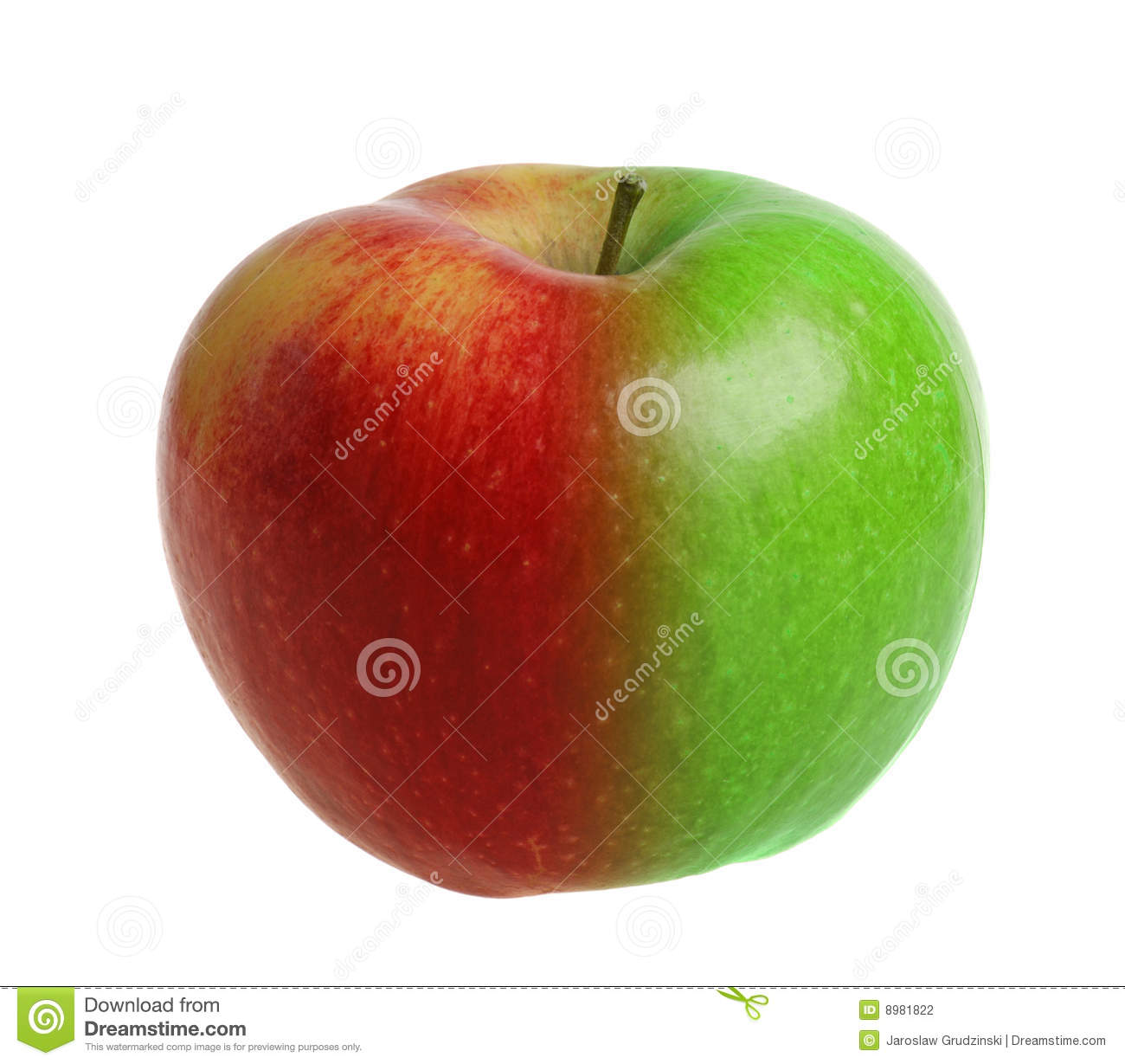 green and red apples. royalty-free stock photo. download red and green apple apples