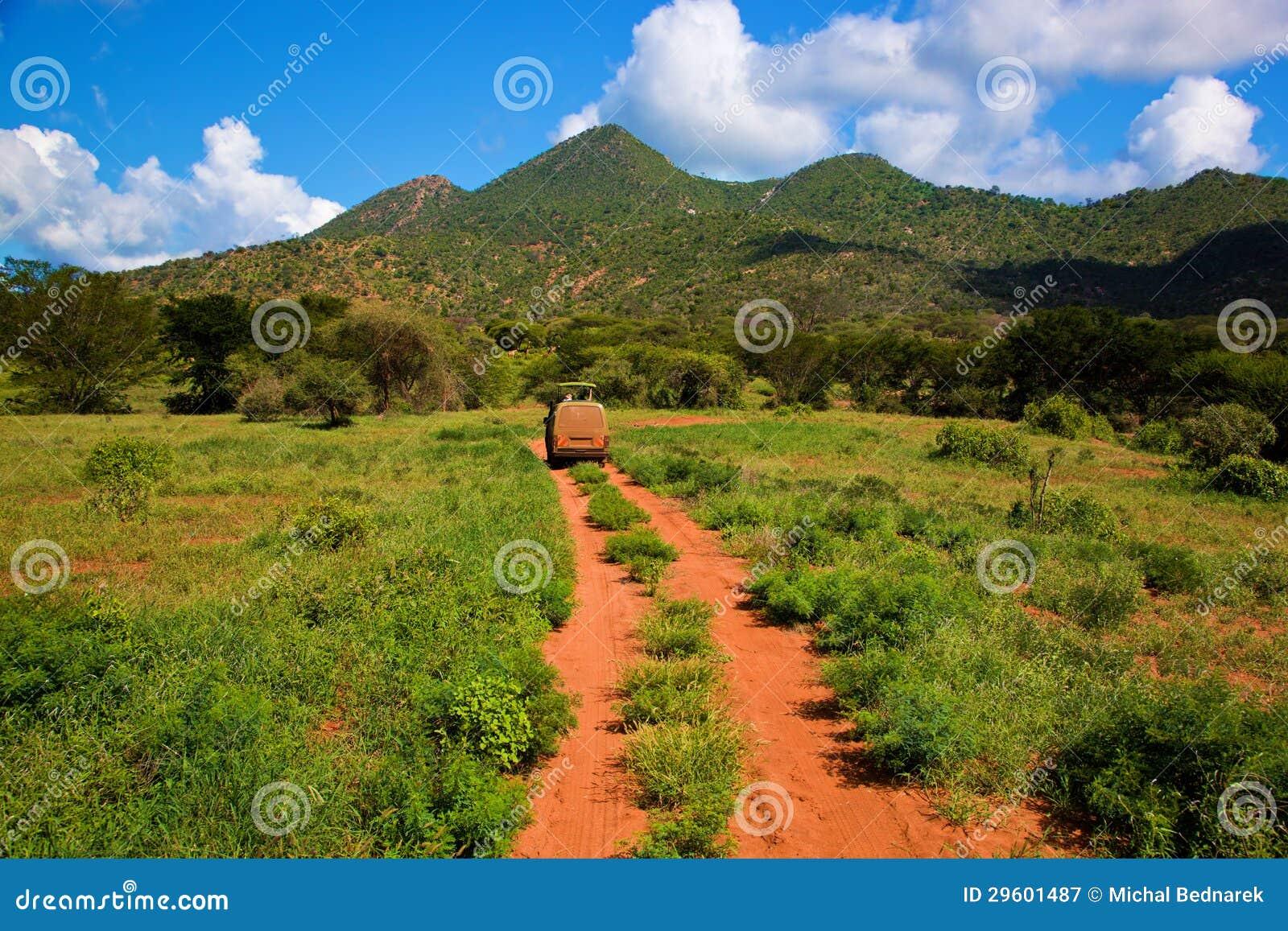 Red ground road, bush with savanna. Tsavo West, Kenya, Africa
