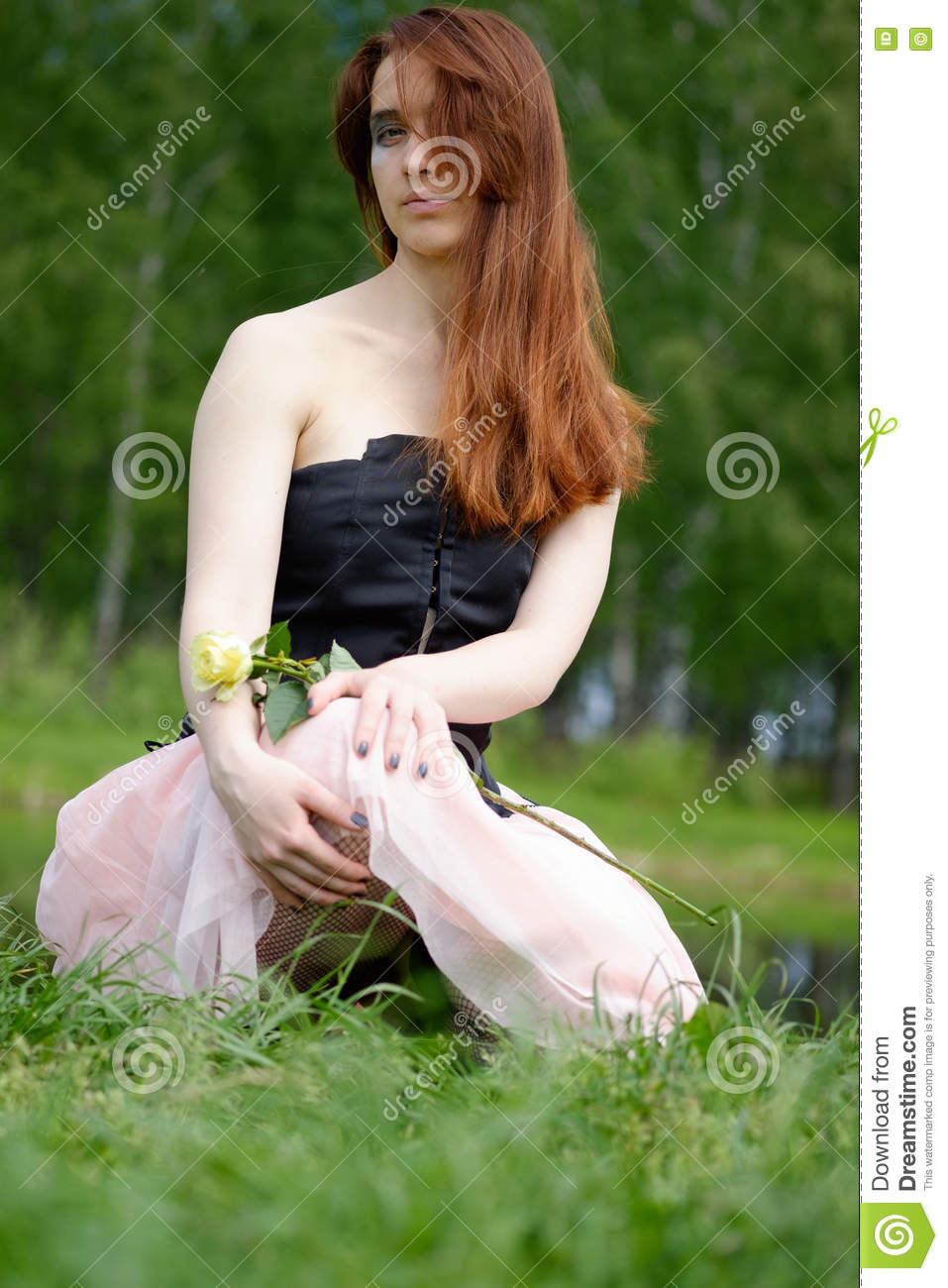 Emo rose stock photography 16491734 - Emo rose pictures ...
