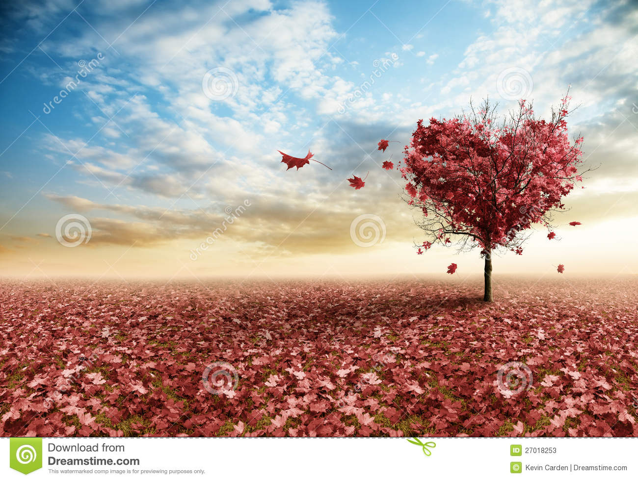 red heart tree stock photos