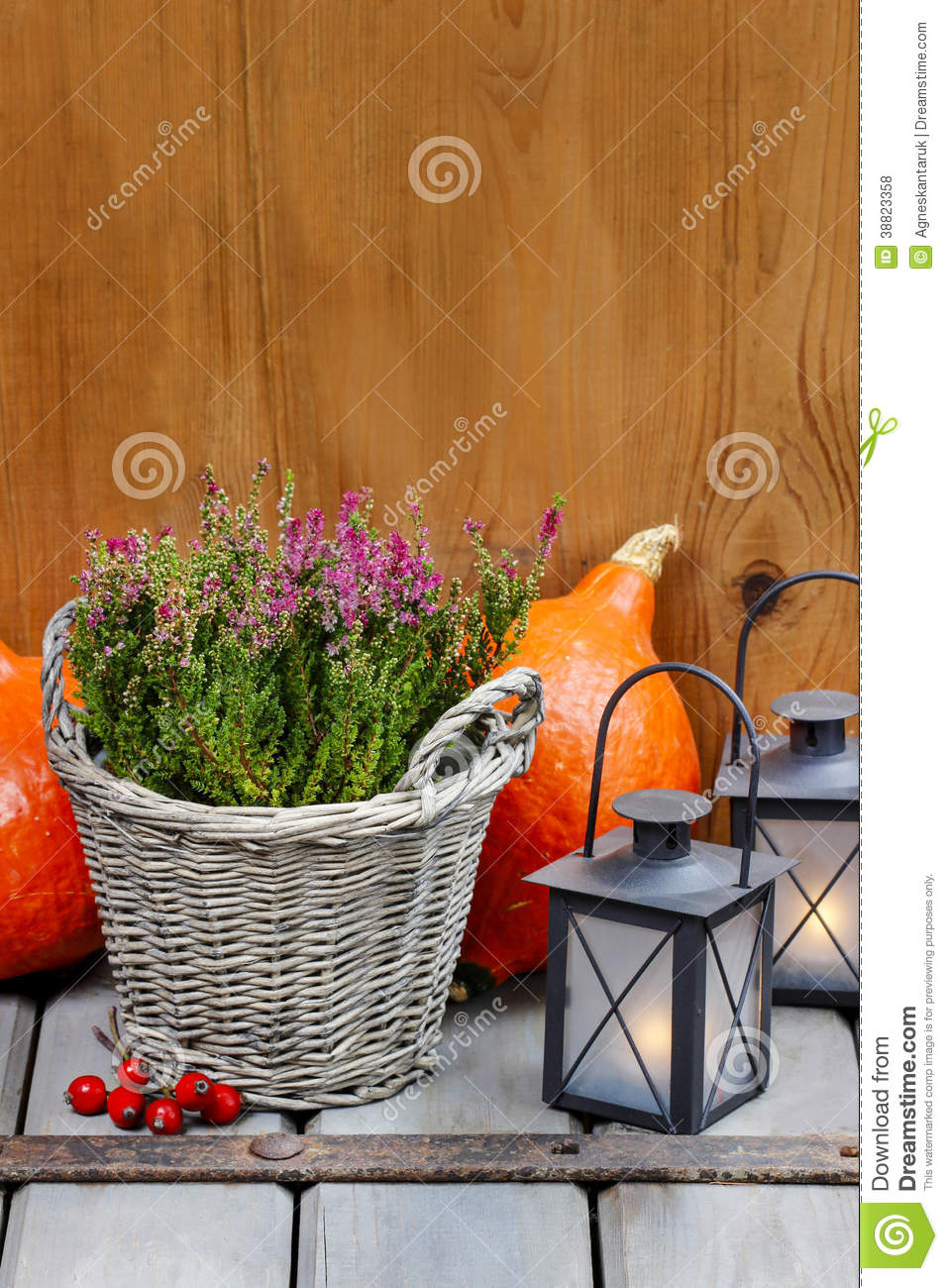Red Heather In Wicker Basket Stock Photo Image Of Fall Nature