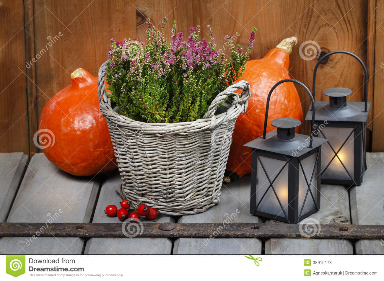 Red Heather In Wicker Basket Stock Photo Image Of Flower Lantern