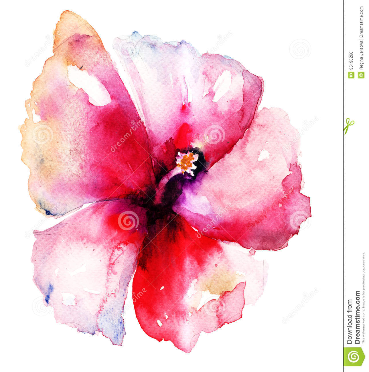 Red Hibiscus Flower Stock Illustration Illustration Of Valentine