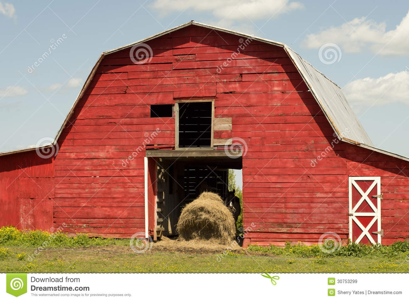 Red Horse Barn Stock Image Image Of Straw Wood Green 30753299