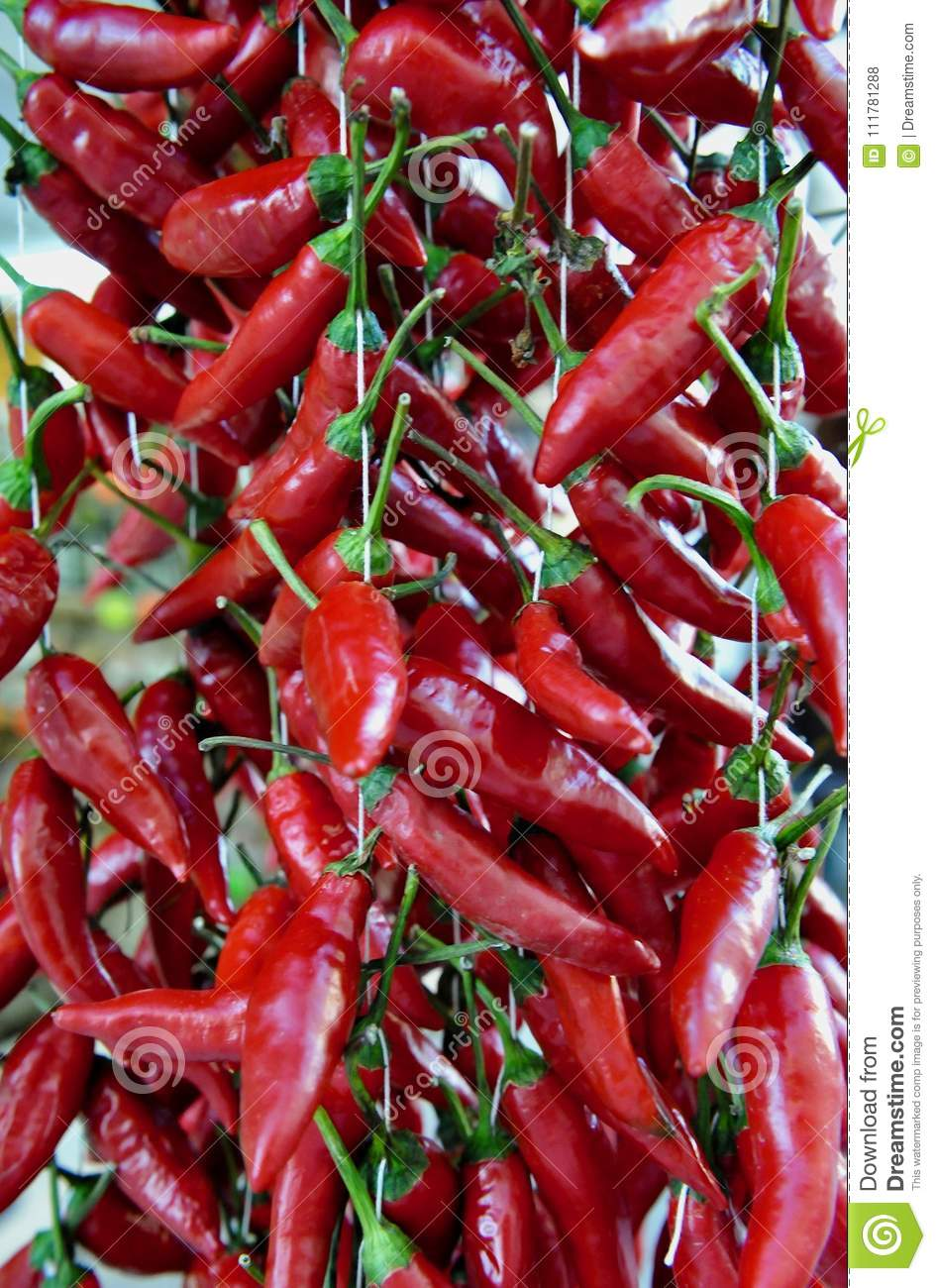 Red , hot, chili peppers.