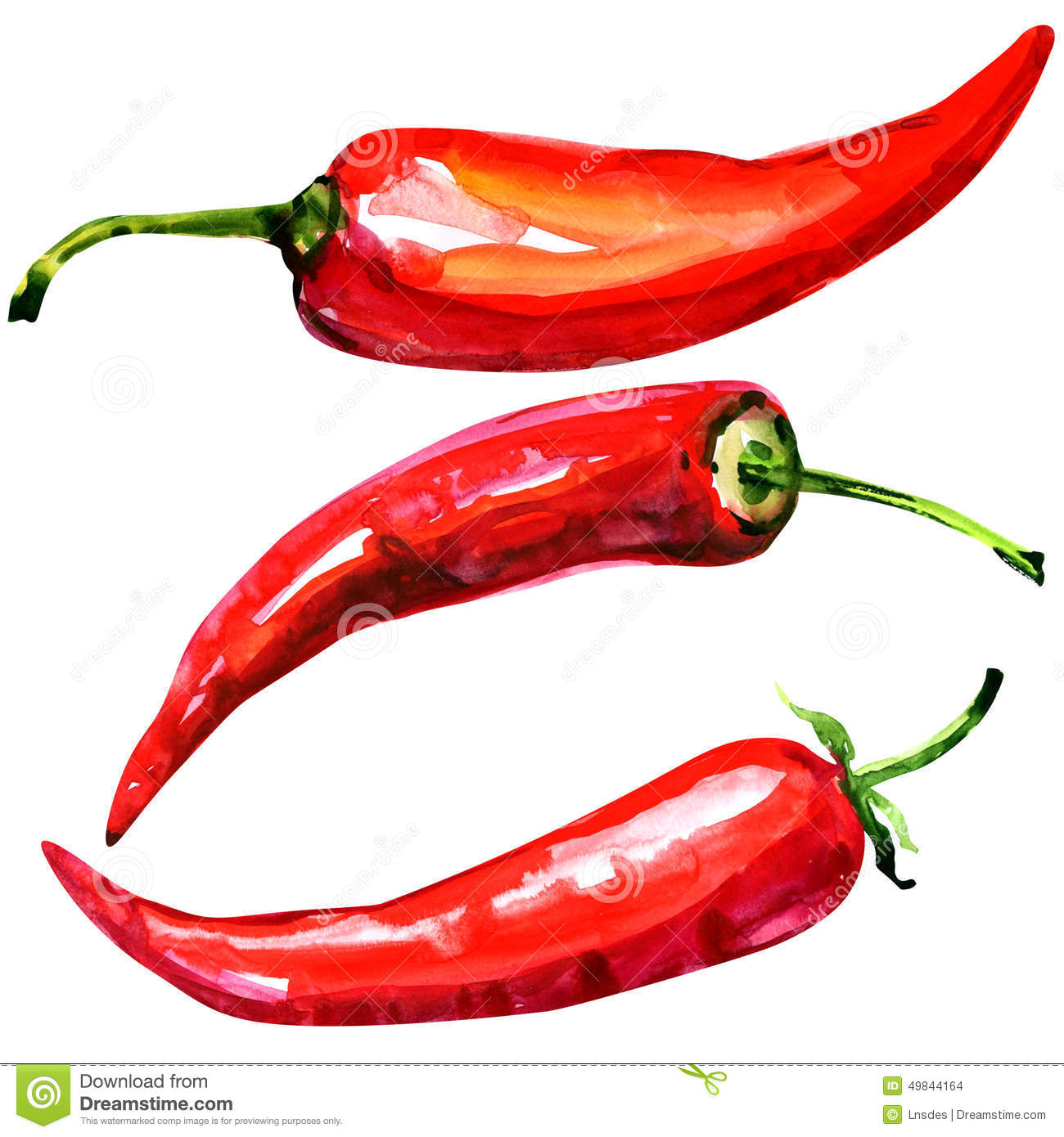 red hot chili peppers essay A study of more than 16000 us adults suggests that consuming red hot chili  peppers might lower the risk of all-cause mortality.