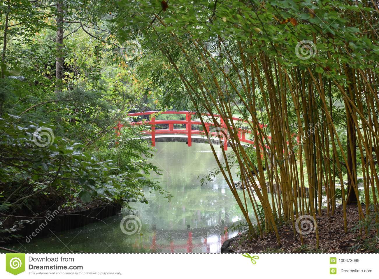 red japanese garden bridge arched over waterway and surrounded by bamboo trees - Red Japanese Garden Bridge