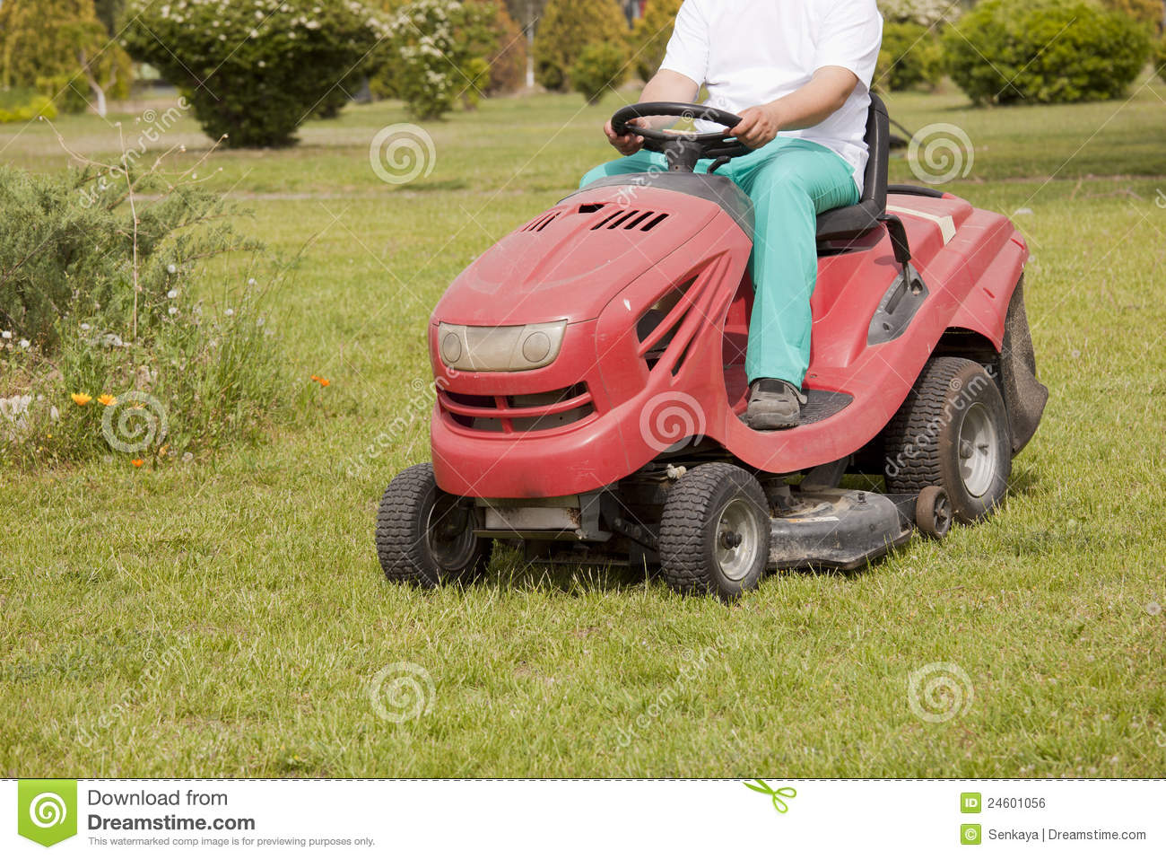 Red lawn mower cutting grass stock photo image 24601056 for Lawn mower cutting grass