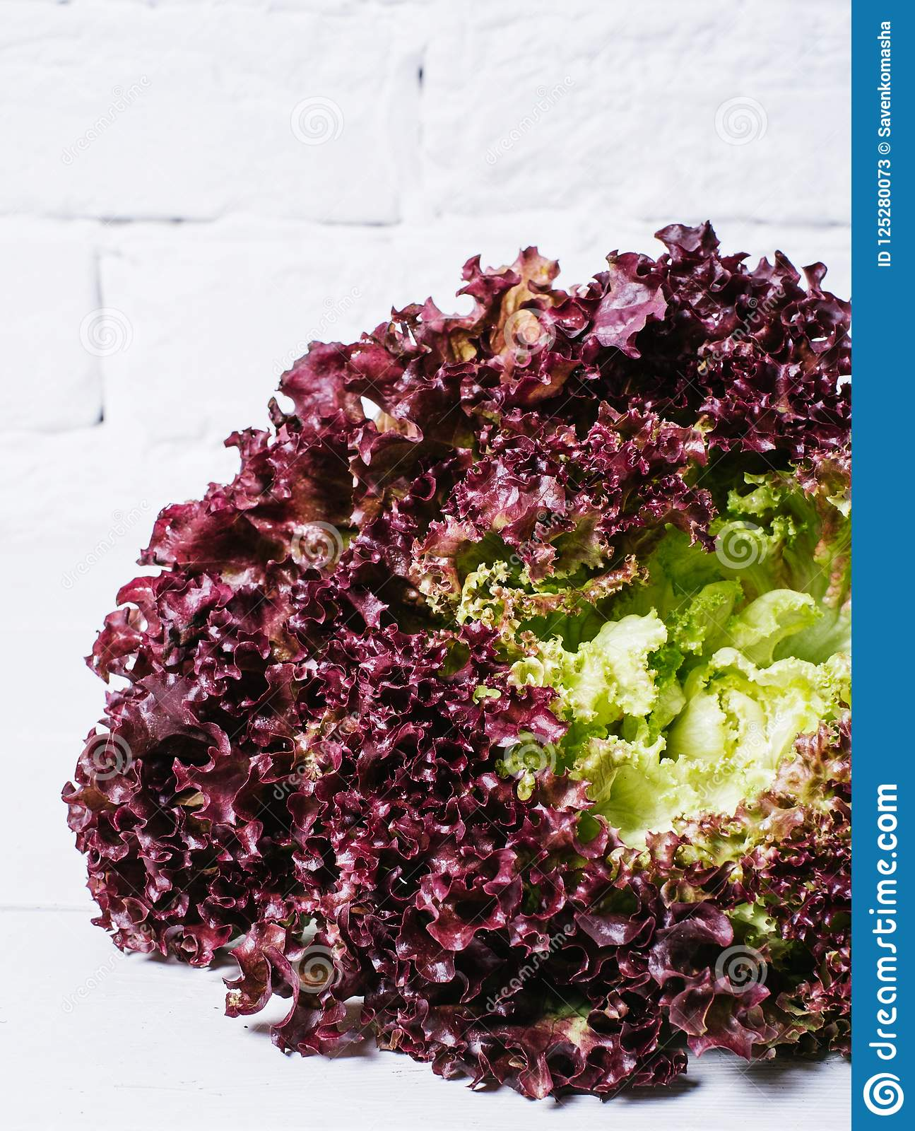 Red lettuce leaves on a background of white brick wall, fresh healthy salad food on kitchen table, space mock up, dieting leaf