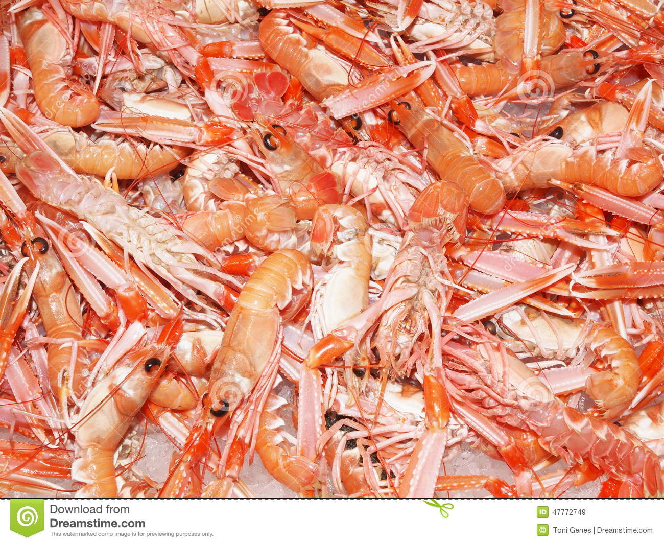 Red Lobsters On Ice Stock Photo - Image: 47772749