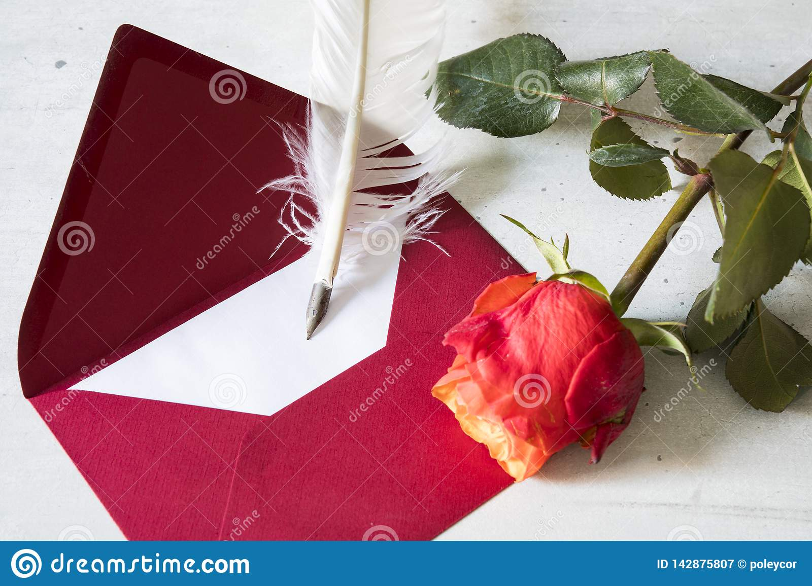 Red love letter with goose feather and rose