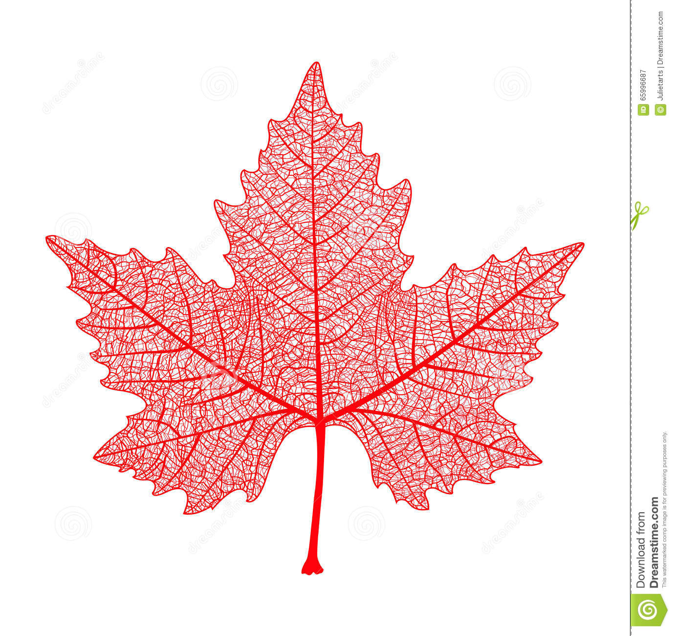 Red maple leaf symbol of canada autumn vector illustration symbol of canada autumn vector illustration biocorpaavc Choice Image