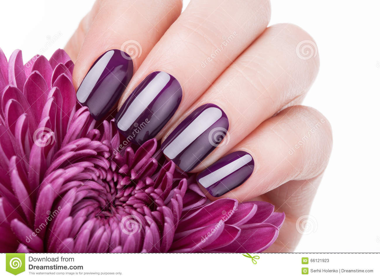 Red Nail Polish Stock Image Image Of Beauty Hand Hygiene 66121923