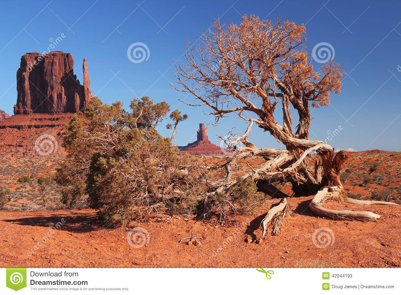 Red Navajo Sandstone of Monument Valley