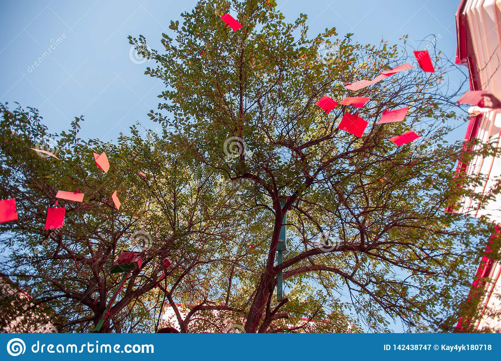 Red notes on a tree, a decorated tree in red
