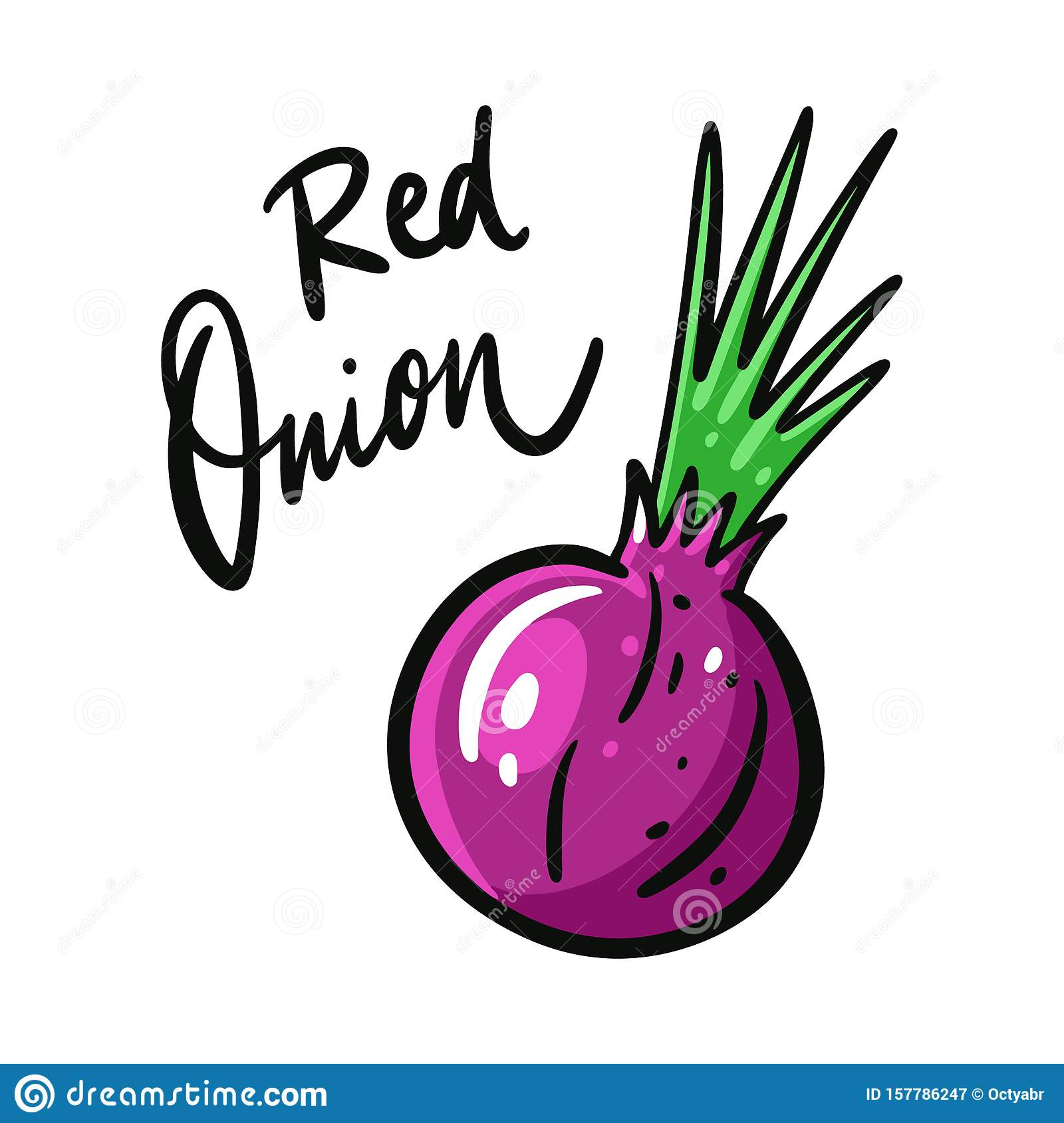 Red Onion Hand Drawn Vector Illustration And Lettering ...