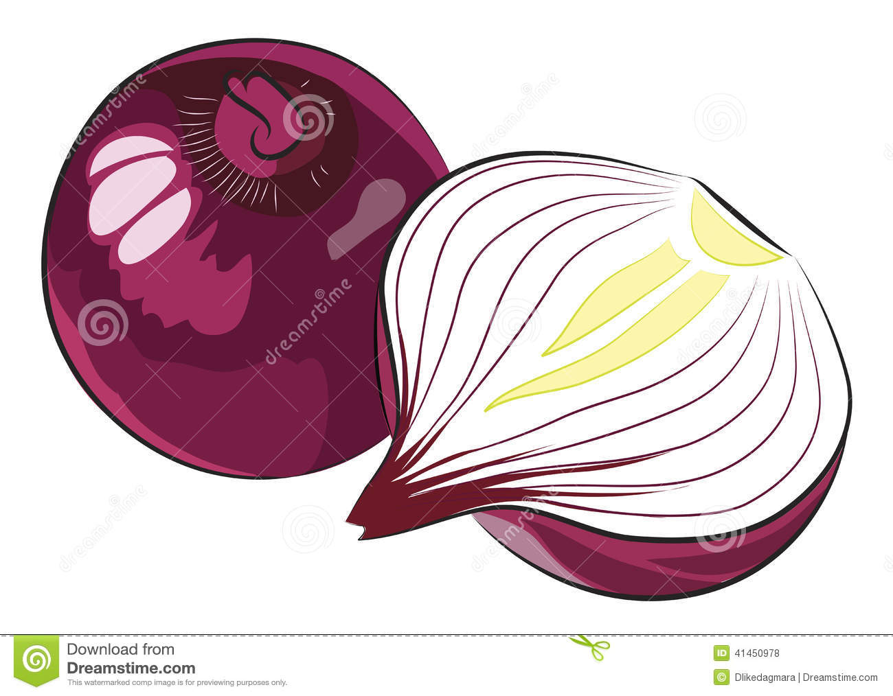 Red Onion stock vector. Image of ingrediant, cooking ...