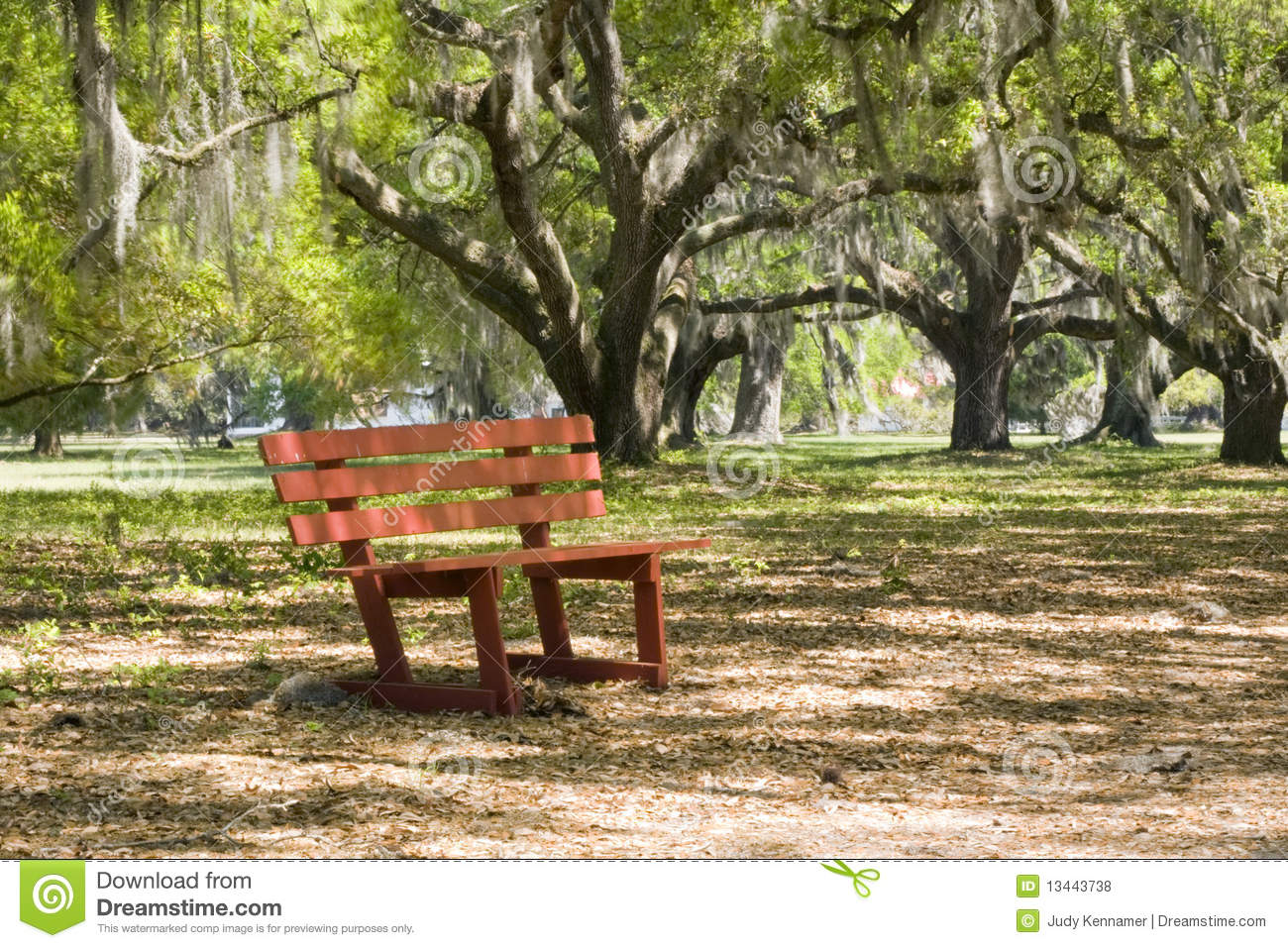Red Park Bench In Live Oak Trees Stock Photo Image 13443738
