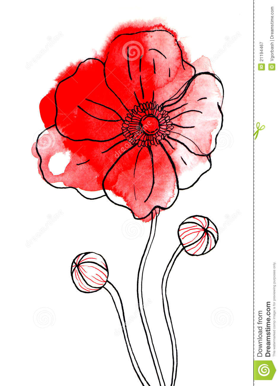 Red peony flower in watercolor