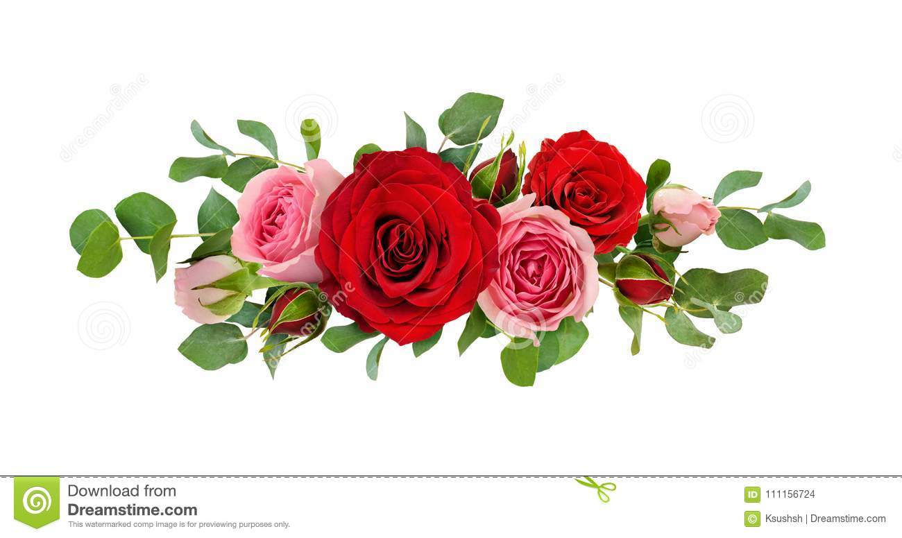 Red And Pink Rose Flowers With Eucalyptus Leaves In A Line Arran