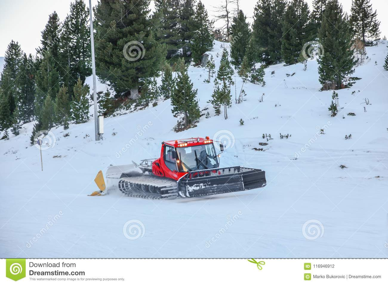 Red Pisten Bully Cleaning Snow On Winter Mountain With Pine Tree