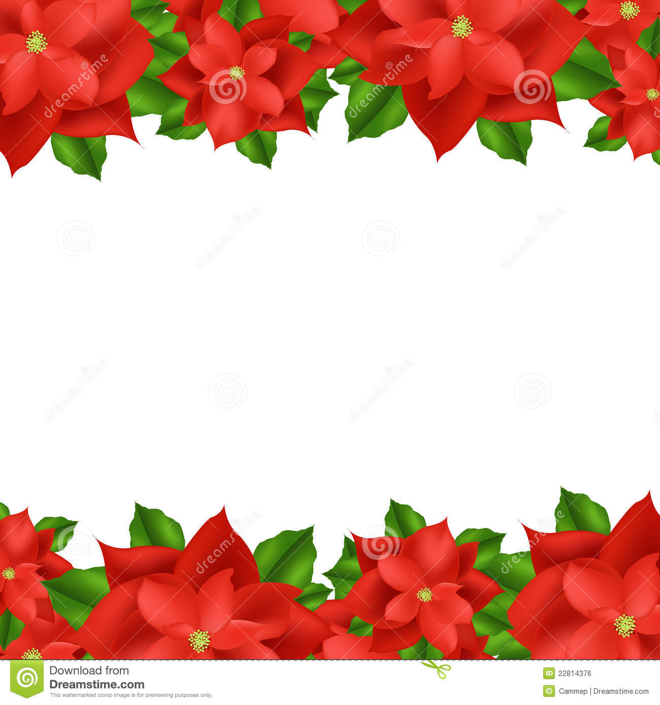 Red Poinsettia Border Royalty Free Stock Image Image