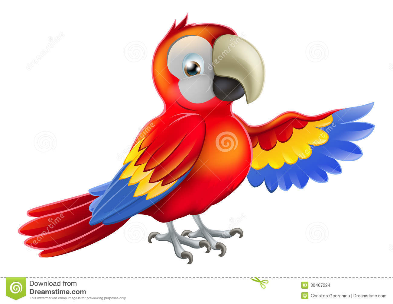 red macaw parrot pointing or showing something with his wing.