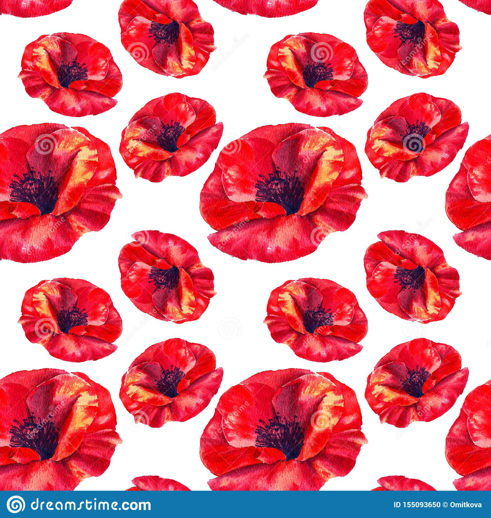 Red poppies on a white background. Floral seamless pattern with big bright flowers.Summer watercolour illustration for
