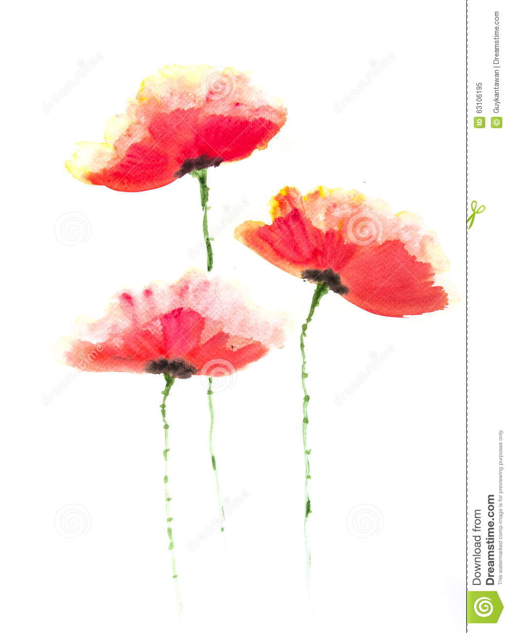 Red Poppy Flower Acrylic Color Painting Stock Illustration
