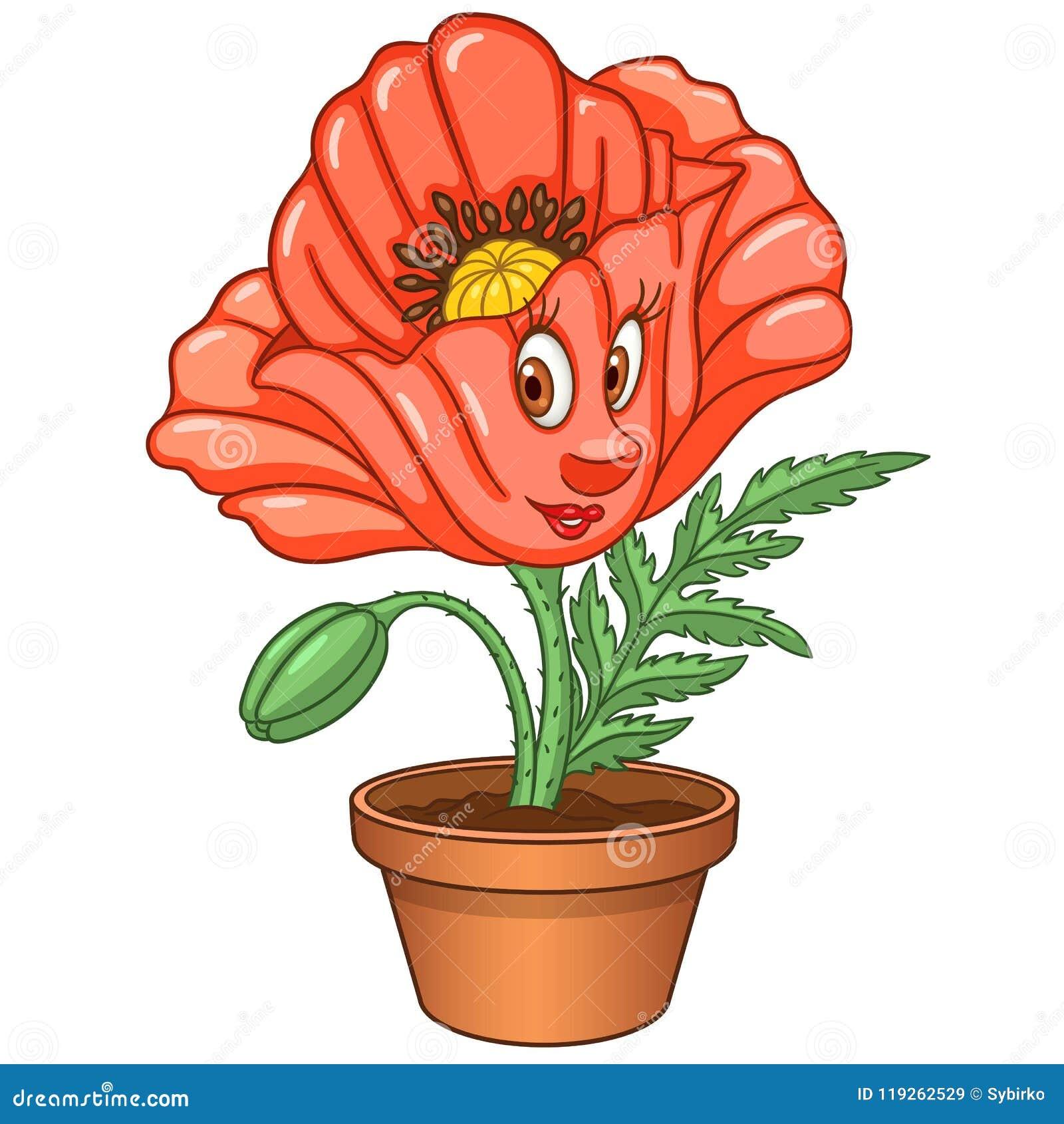 Cartoon Red Poppy Flower Stock Vector Illustration Of Botany