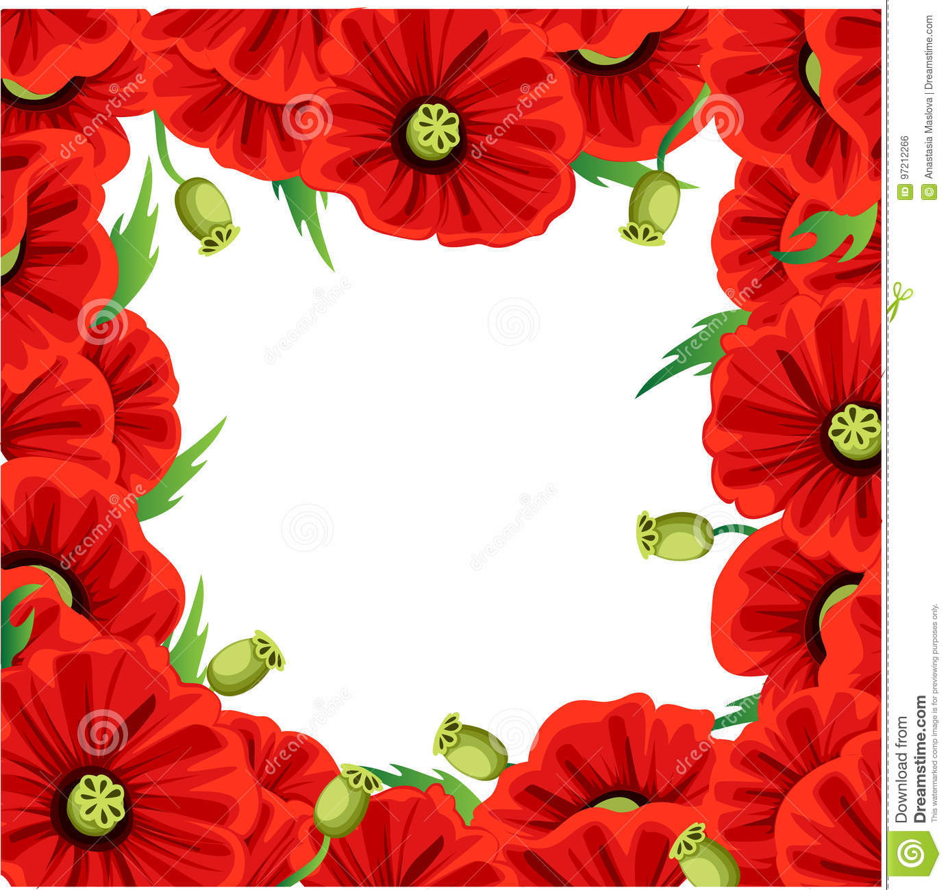 Red Poppy Flower Isolated On White Background Vector Red Romantic