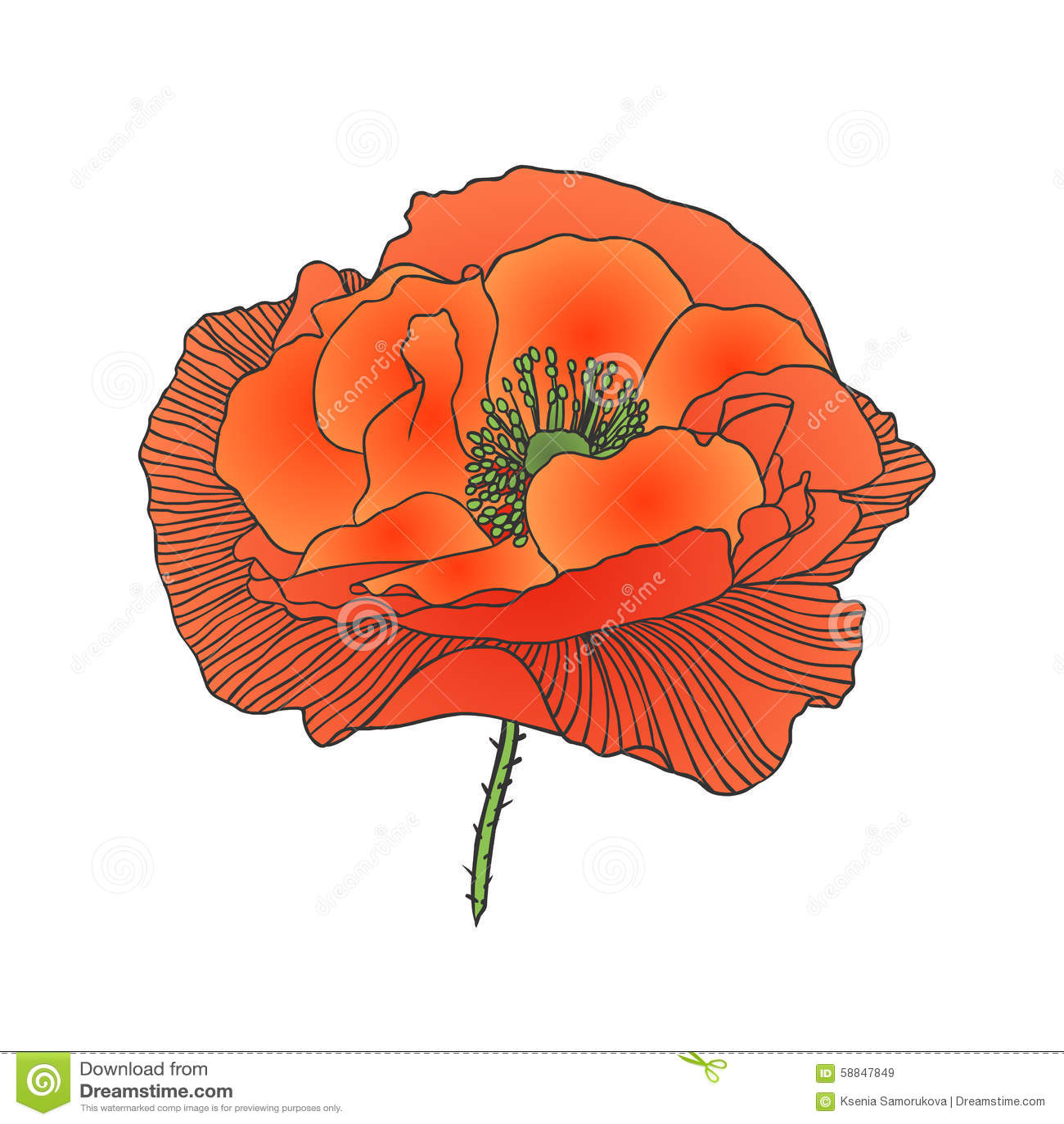 Red poppy flower illustration 58847849 megapixl red poppy flower mightylinksfo