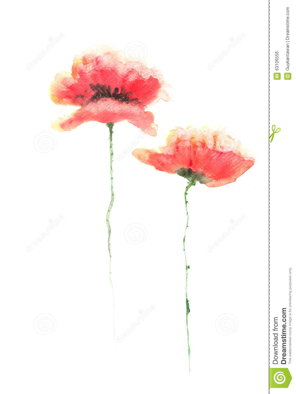 Red Poppy Flowers Acrylic Color Painting Stock Illustration