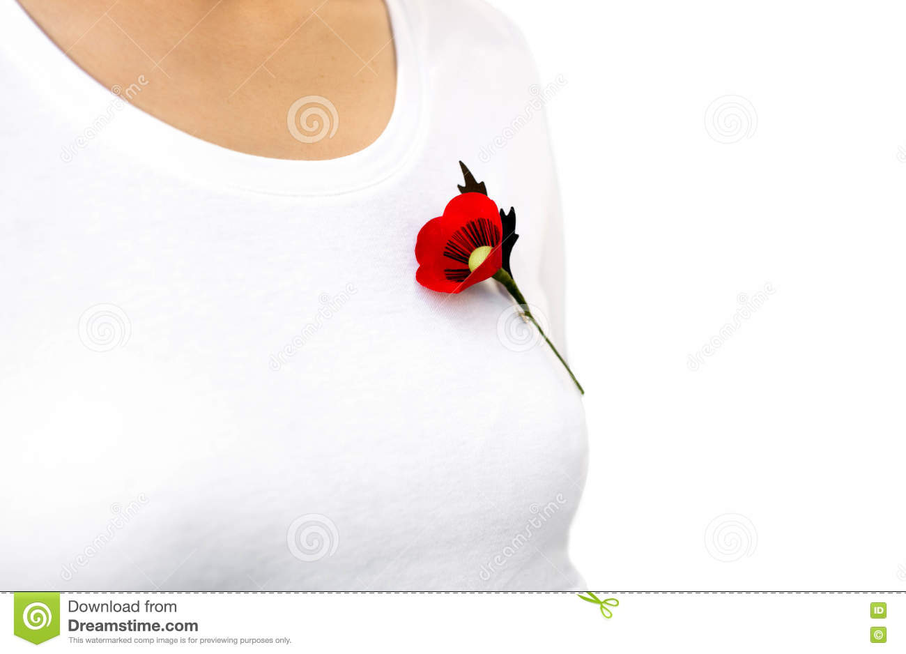 Red Poppy Lapel Pin On Woman T- Shirt Stock Photo - Image of