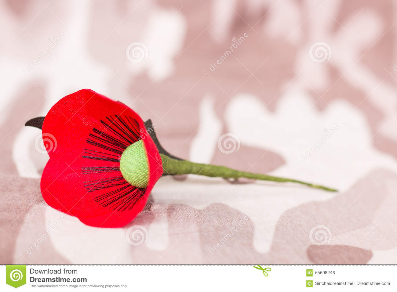 Red Poppy Is A Symbol Of Thailand Veterans Day Stock Photo Image