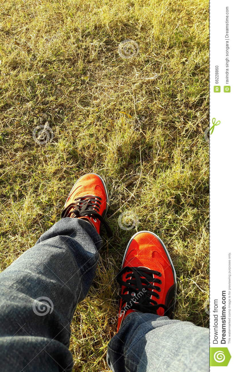 Red Puma Shoes With Grass HD Wallpaper Stock Photo - Image ...
