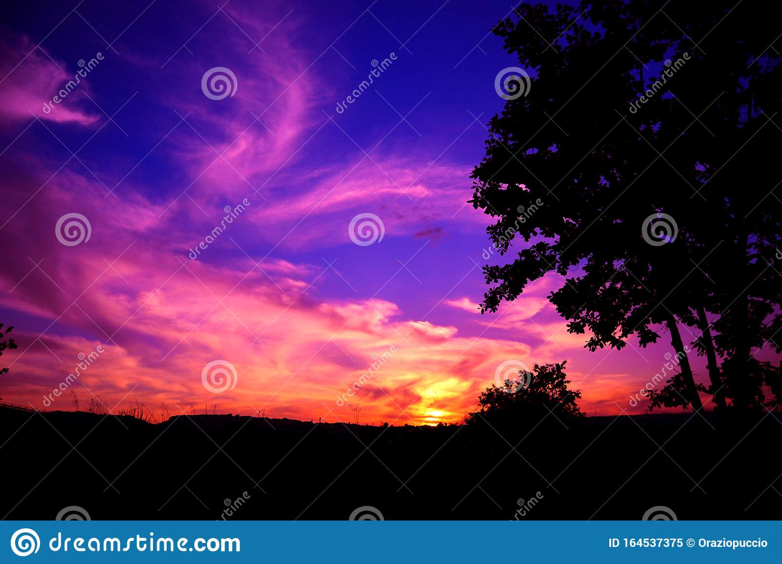 Red Purple Sunset Stock Image Image Of Magical Color 164537375