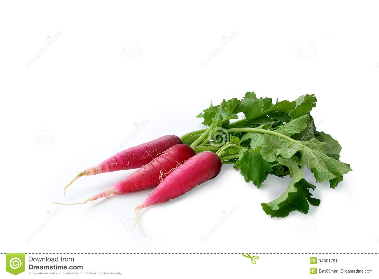 Bunch of red radish isolated on white background.