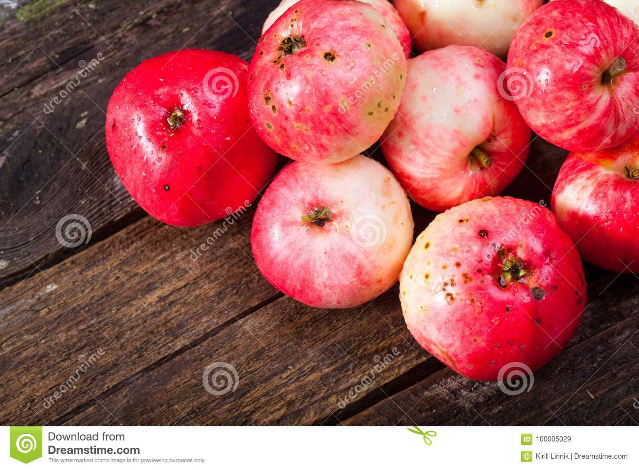 Download Red ripe apples stock image. Image of autumn, freshness - 100005029