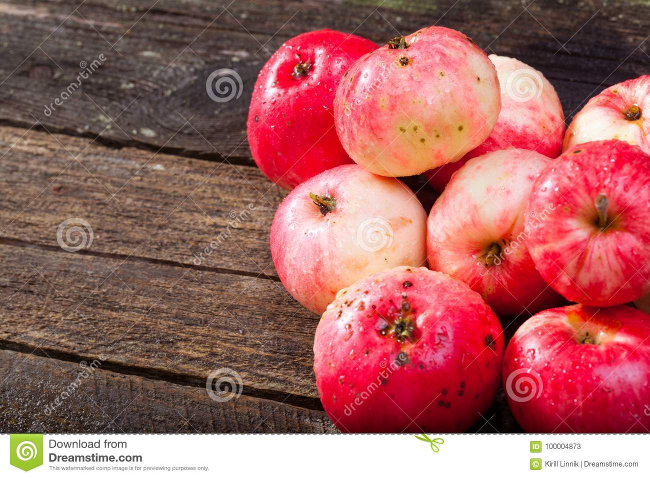 Download Red ripe apples stock image. Image of juicy, group, nobody - 100004873