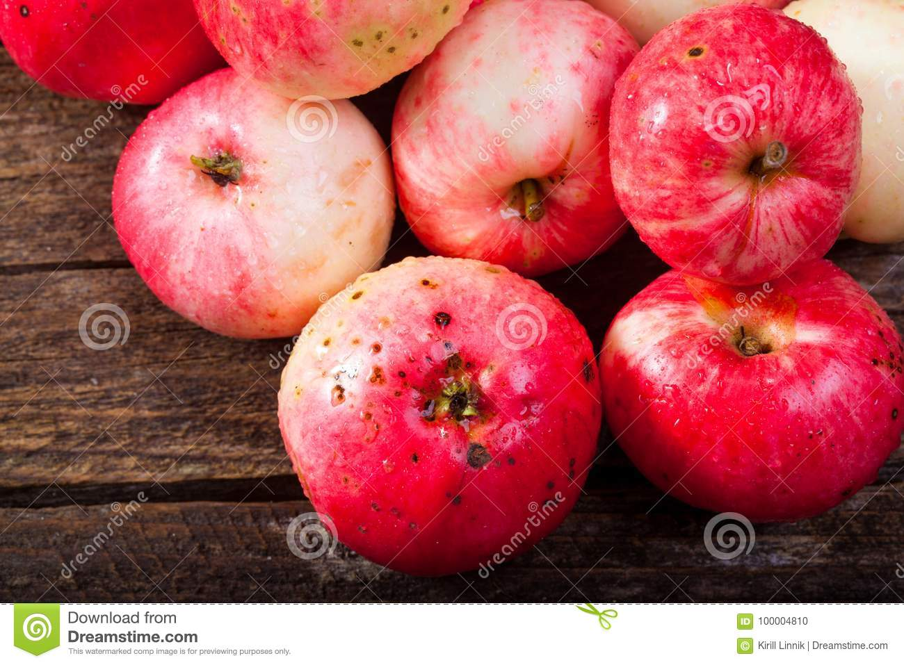 Download Red ripe apples stock photo. Image of meal, juicy, food - 100004810