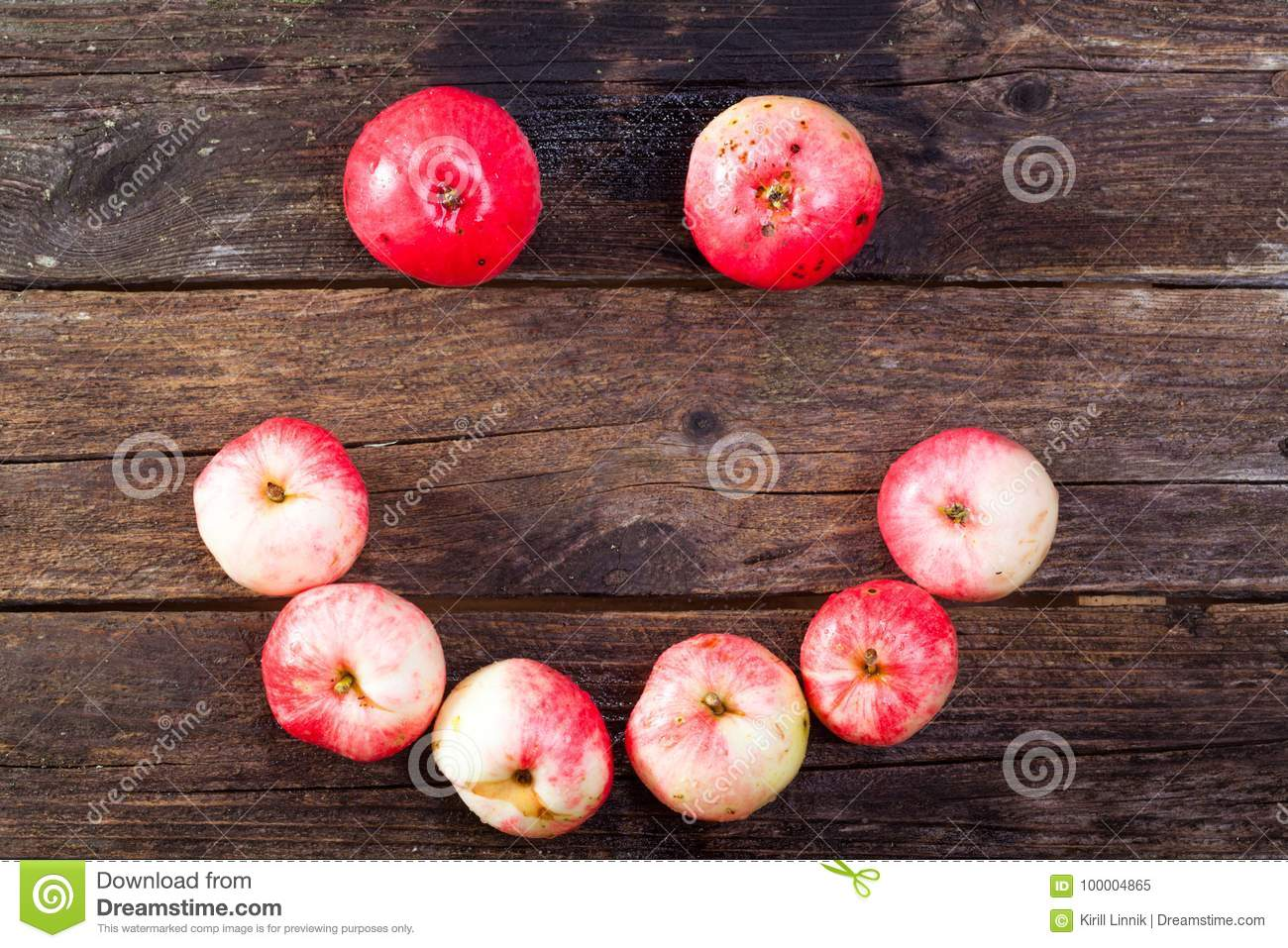 Download Red ripe apples stock image. Image of rustic, healthy - 100004865