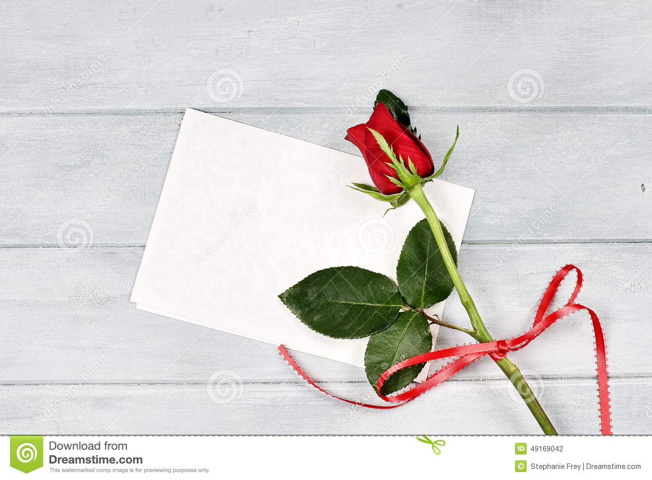 Beautiful Single Red Rose Flower Isolated Royalty Free: Red Rose With Blank Card Stock Photo
