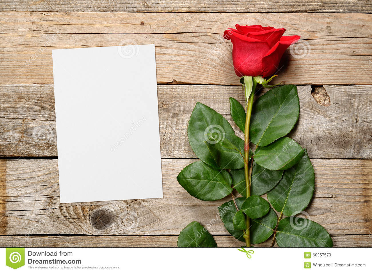 Red Rose And Blank Greeting Card Stock Image Image Of Postcard