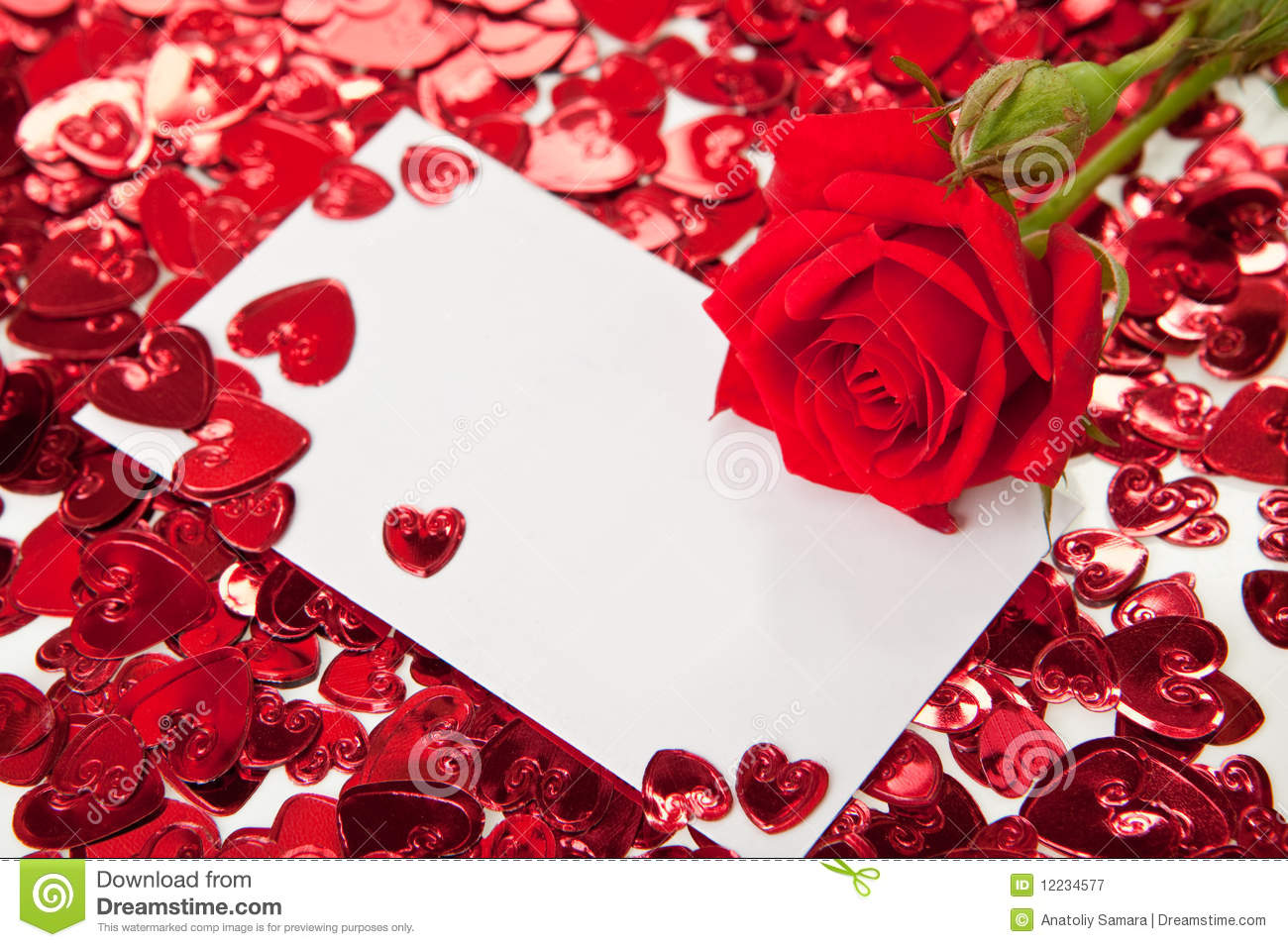 Red Rose And Blank Invitation Card Stock Photo 12234577 Megapixl