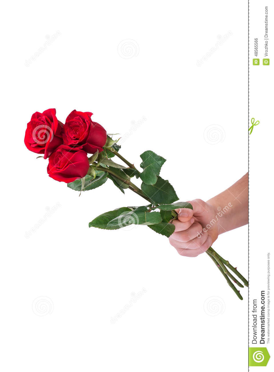 Red rose bouquet flower in hand men isolated with clipping path red rose bouquet flower in hand men isolated with clipping path izmirmasajfo