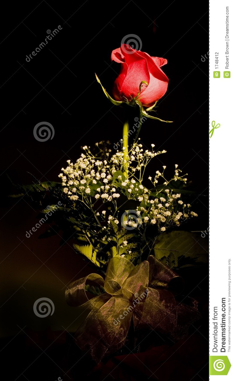 Red Rose Flower Arrangement Stock Photo Image Of Fresh