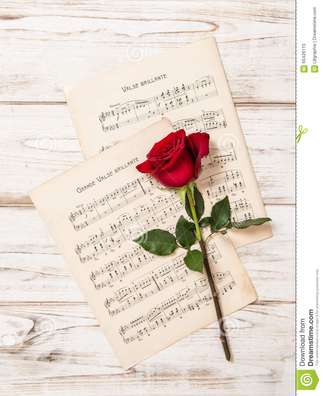 Red Rose Flower And Music Notes Sheet Stock Image