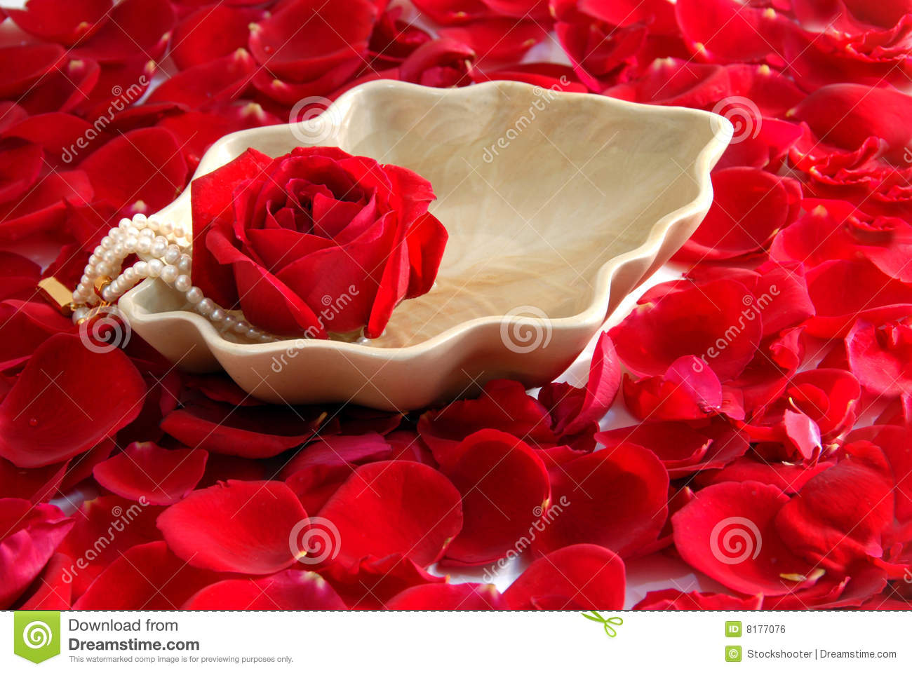 Red Rose Flower Petals Spa Aromatherapy Stock Photo Image Of Pure